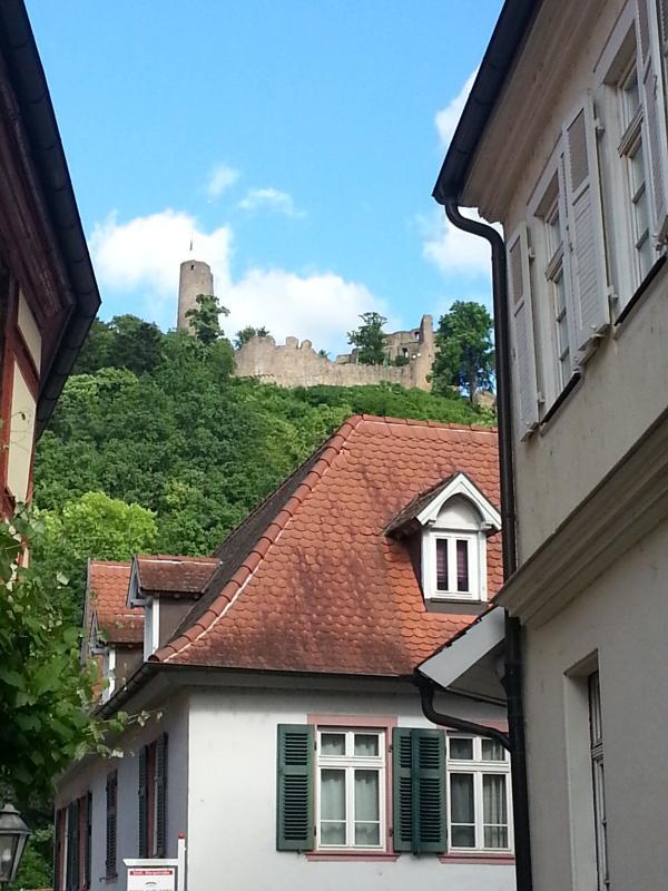 Die Windeck in Weinheim, aus den Gassen geknipst.