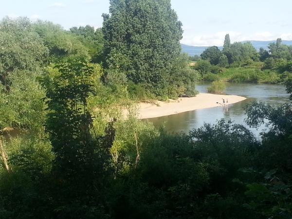 (Alt-) Neckarbogen Seckenheim