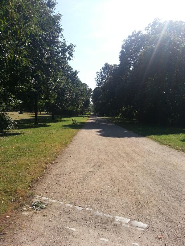 Allee im Schlosspark Wiesbaden-Biebrich