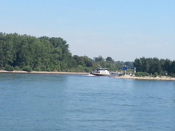 Main Mündung von Mainz aus gesehen.