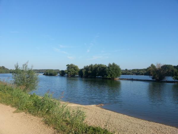 Der Leinpfad am Rhein, irgendwo zwischen Eltville und Wiesbaden