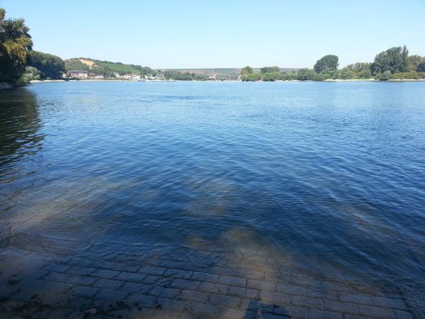 Der Rhein bei Oppenheim mit Blick auf Nierstein