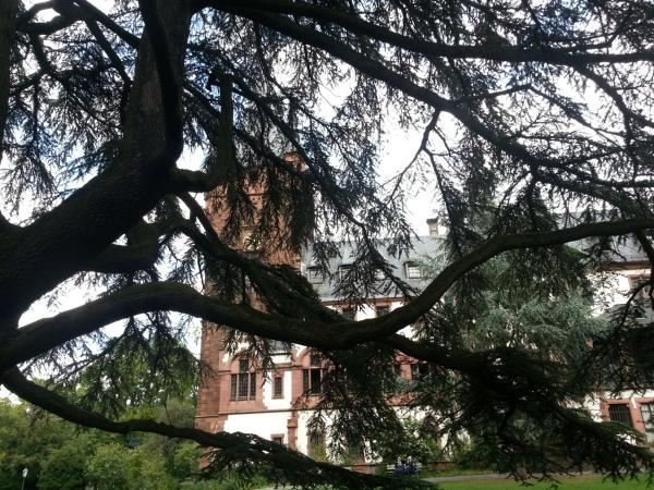 #lustparken in Weinheim